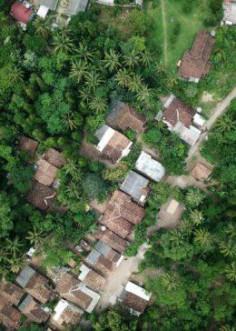 Zielone dachy – praktyczne i ekologiczne rozwiązanie dla Twojego domu